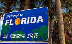Florida's cannabis market
