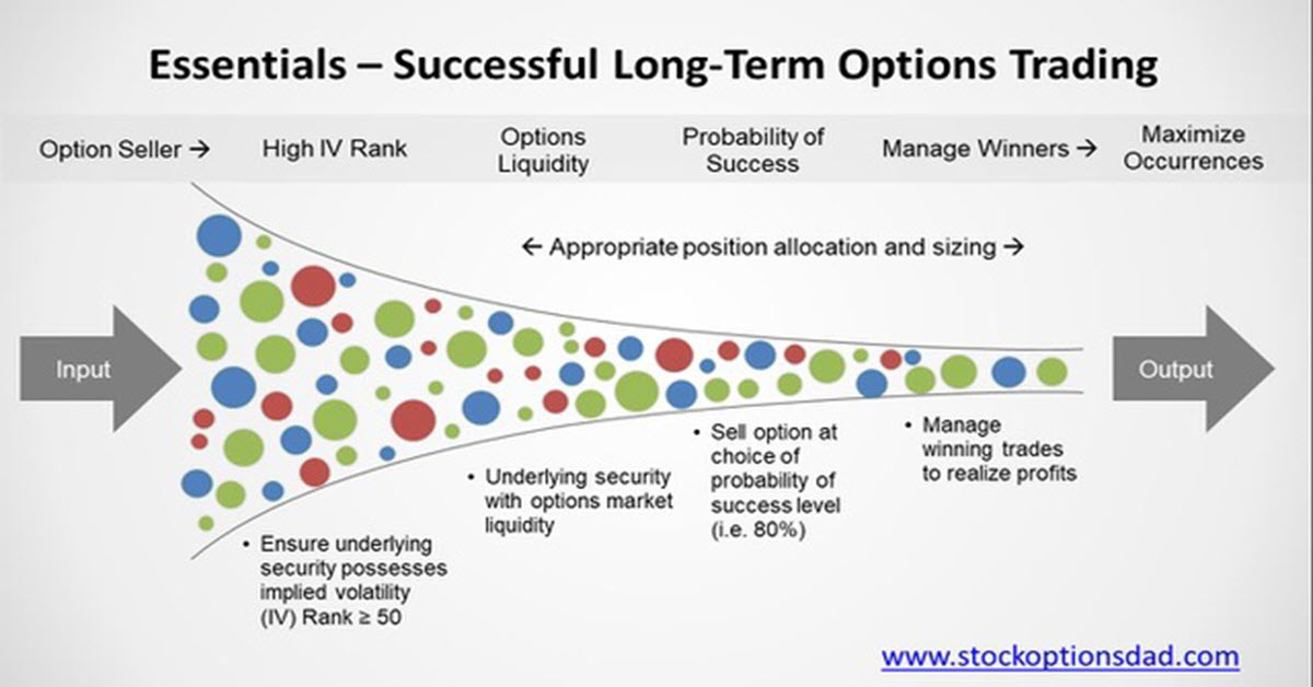 Export option trading
