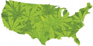 Cannabis Is Still Illegal