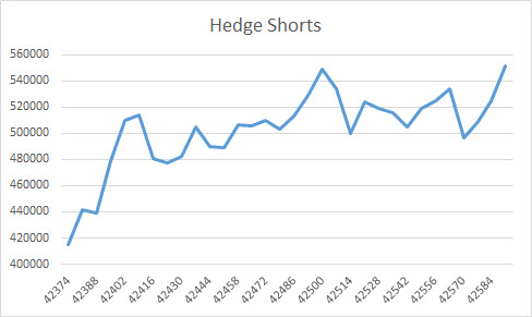 Hedge Shorts (Oil)